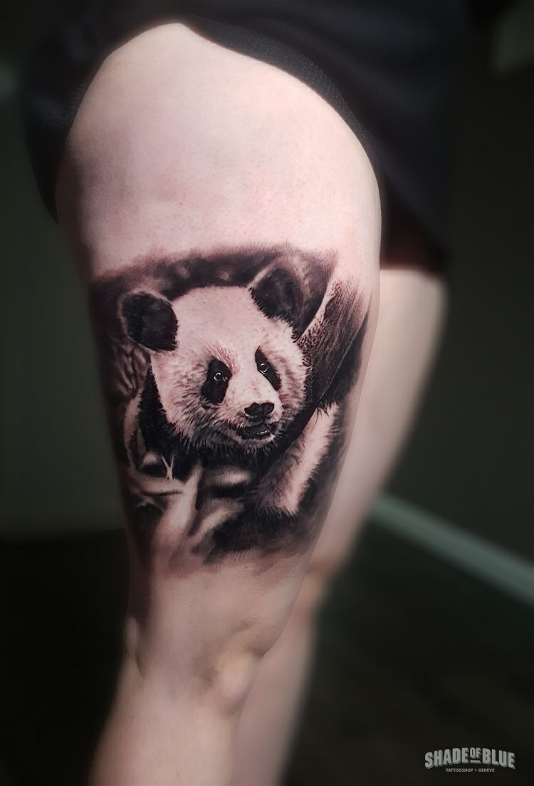 Tatouage realiste animaux panda noir et gris